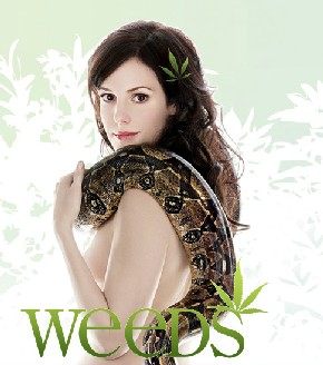 Weeds S4 Episodes 5, 6 et 7 by BogossG preview 2