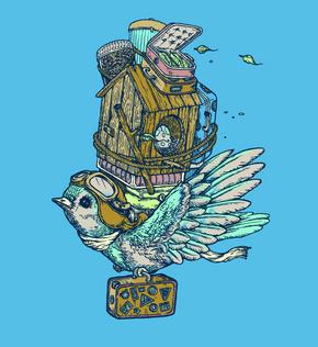 birdmigration1_phixr.jpg