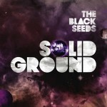 black-seeds-solid-ground