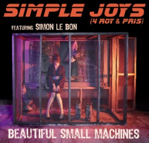 beautiful-small-machines