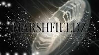 Marshfieldz_Cover_rev