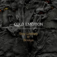 Troy_Lindsey_Cover_REVIEW